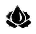 Soyuzparfumerprom Logo
