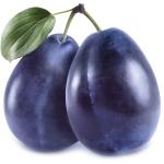 Слива Prunus