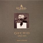 Scabal Orchid: орхидея для джентльмена